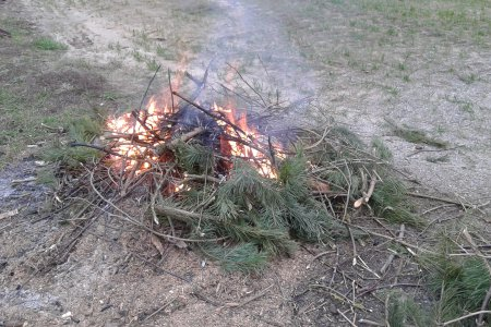 Kiełbaska z ogniska tak, ale …