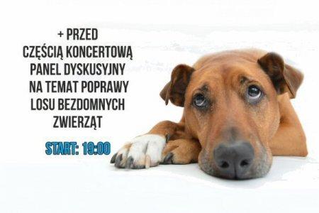 Hungry Dog Fest - koncert na rzecz psów ze schron