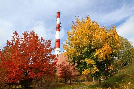 Komin przedsiębiorstwa energetyki cieplnej wystający zza drzew