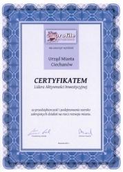 certyfikat - lider aktywnosci inwestycyjnej