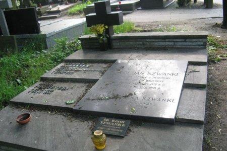 Nagrobna płyta w kształcie prostokąta. Na górze po lewej niewysoki krzyż. Na płycie po prawej nazwiska: Karol Jan Szwanke, Helena Szwanke. Na małej tabliczce na dole płyty napis: śp. Karol Szwanke i niżej nieczytelne napisy. Niżej stoi żółty znicz